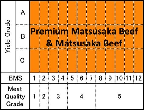 Matsusaka Mapping