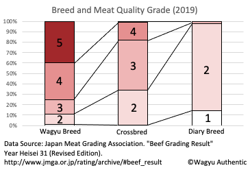 Breed and Grading
